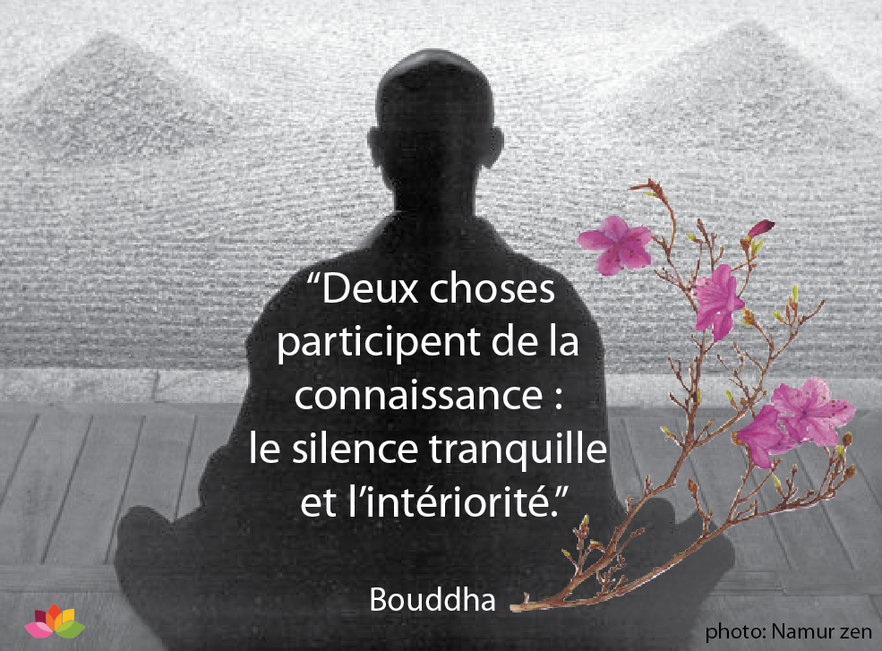 Super Citation Sagesse | Pratiquer la Méditation OB94